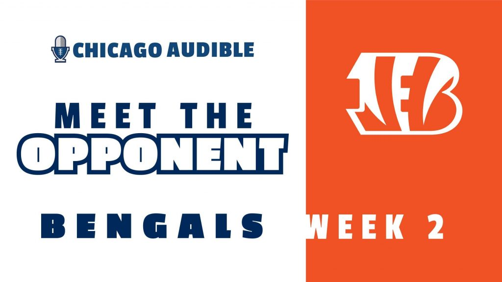 Bears Preview - Meet the Bengals (Week 2)