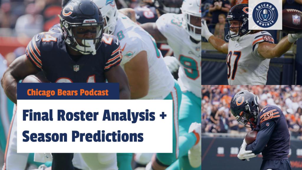 Chicago Bears Roster Analysis Season Predictions